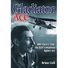 Gladiator Ace: Bill 'Cherry' Vale, the RAF's Forgotten Fighter Ace (Haynes)